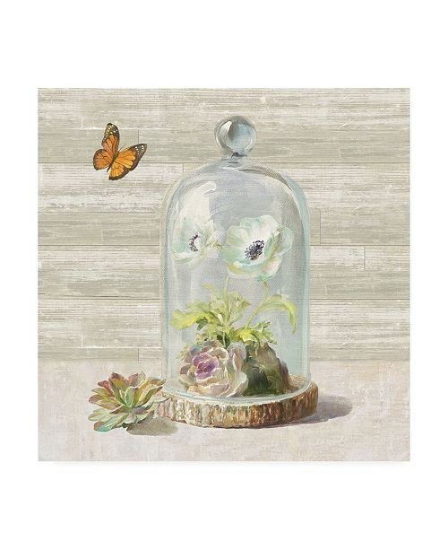 "Trademark Global Danhui Nai Succulent Garden I Canvas Art - 19.5"" x 26"""