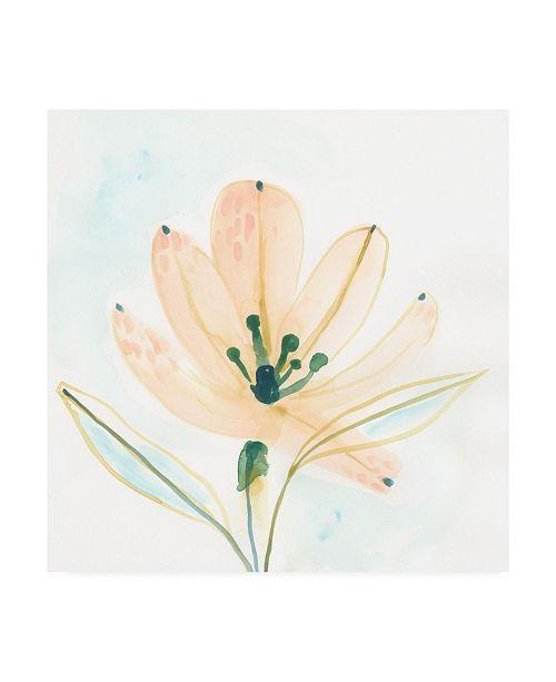 "Trademark Global June Erica Vess Garden Essence VI Canvas Art - 36.5"" x 48"""