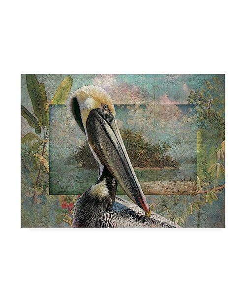 "Trademark Global Steve Hunziker Pelican Paradise II Canvas Art - 36.5"" x 48"""