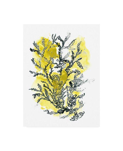 "Trademark Global June Erica Vess Citron Sea Kelp II Canvas Art - 36.5"" x 48"""