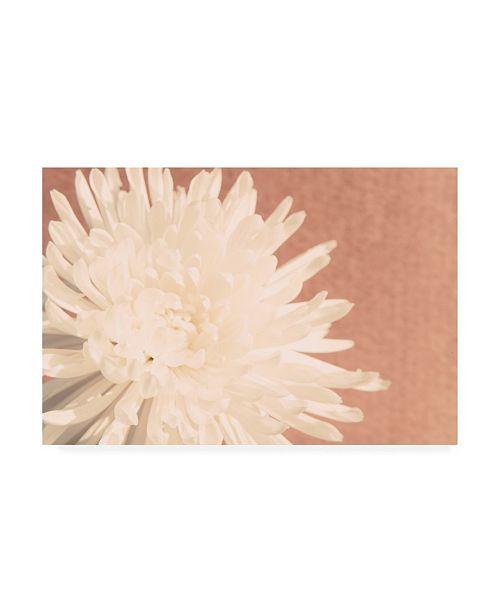 "Trademark Global Jason Johnson Floral Canvas Art - 36.5"" x 48"""