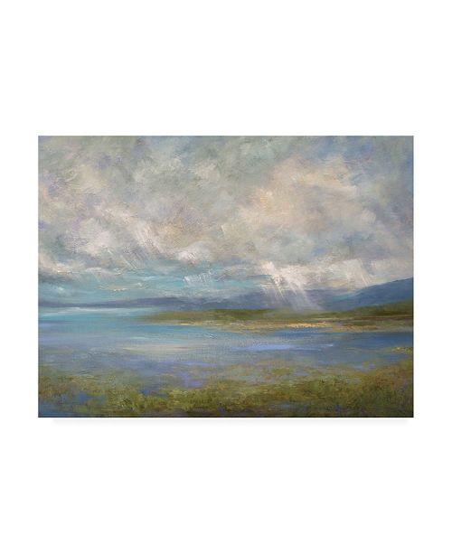 "Trademark Global Sheila Finch South Bay Lights Canvas Art - 36.5"" x 48"""