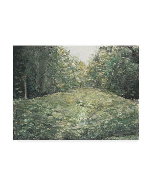 "Trademark Global Natasha Chabot Virginia Forest I Canvas Art - 36.5"" x 48"""