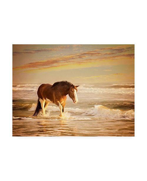 """Trademark Global PH Burchett Sunkissed Horses V Canvas Art - 19.5"""" x 26"""""""