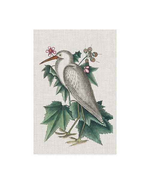 "Trademark Global Mark Catesby Catesby Heron III Canvas Art - 36.5"" x 48"""