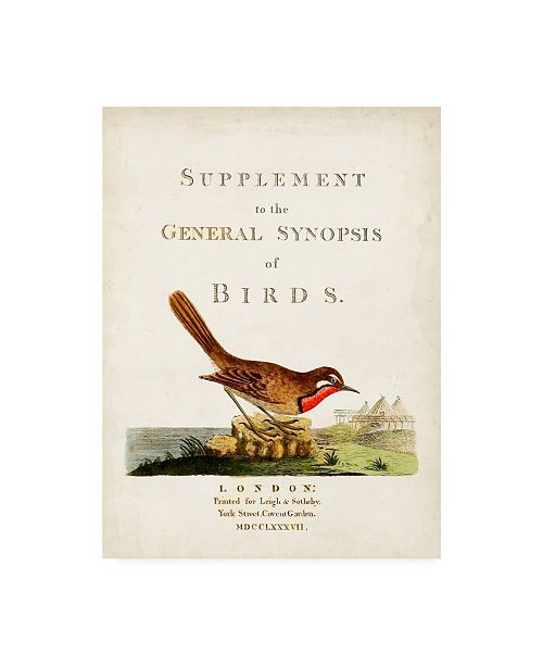 "Trademark Global John Latham General Synopsis of Birds Canvas Art - 36.5"" x 48"""