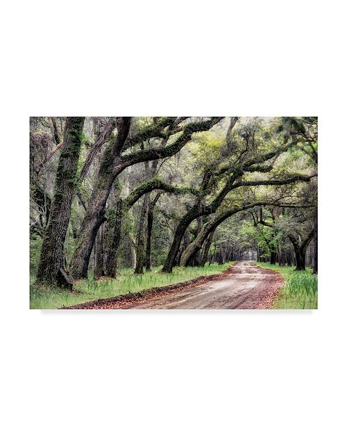 "Trademark Global Danny Head Dirt Road II Canvas Art - 20"" x 25"""