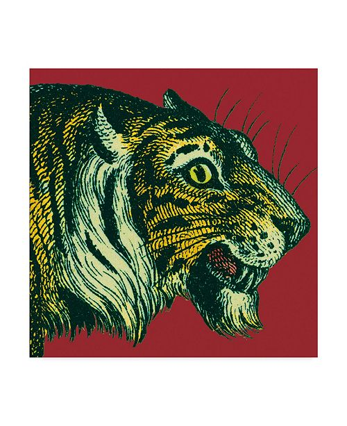 "Trademark Global Wild Apple Portfolio Jungle Flair I Canvas Art - 20"" x 25"""