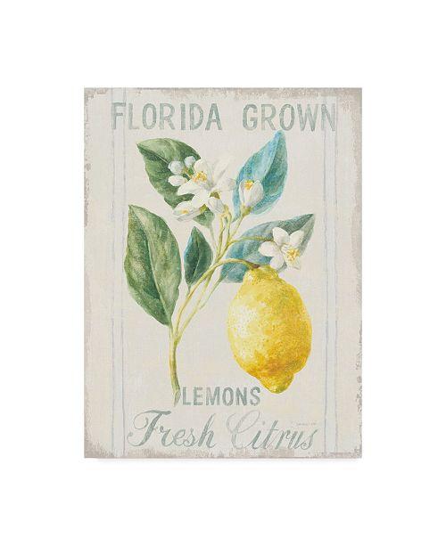 "Trademark Global Danhui Nai Floursack Lemon I Canvas Art - 15"" x 20"""