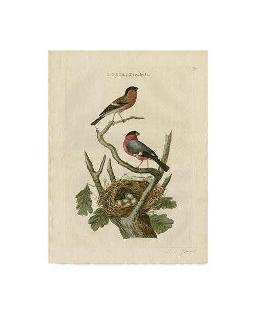 "Trademark Global Nozeman Nozeman Birds and Nests I Canvas Art - 15"" x 20"""
