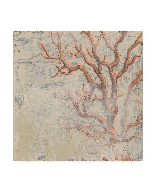 "Trademark Global June Erica Vess Coastal Cameo VI Canvas Art - 15"" x 20"""