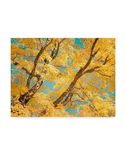 "Trademark Global Judy Stalus Autumn Tapestry V Canvas Art - 15"" x 20"""