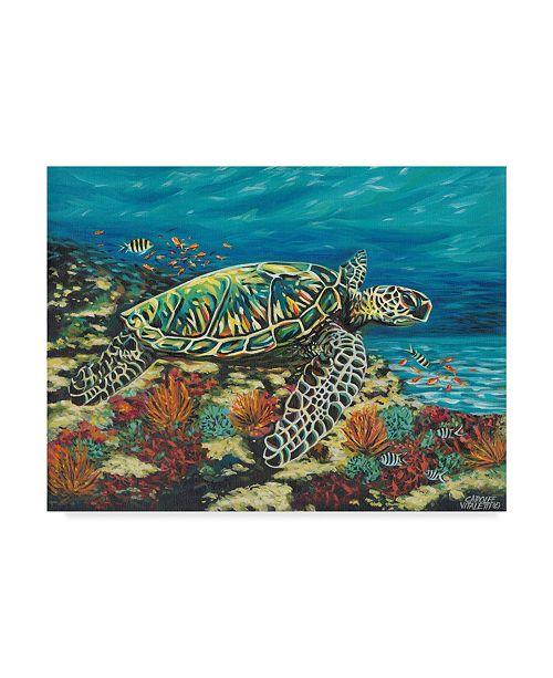 "Trademark Global Carolee Vitaletti Deep Sea Swimming II Canvas Art - 20"" x 25"""