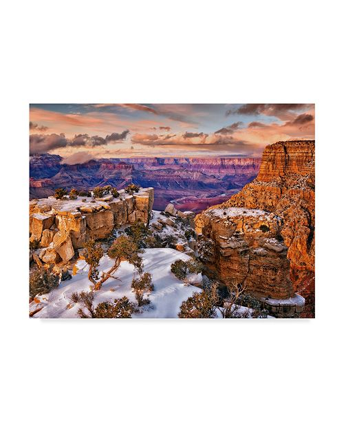 "Trademark Global David Drost Snowy Grand Canyon V Canvas Art - 20"" x 25"""
