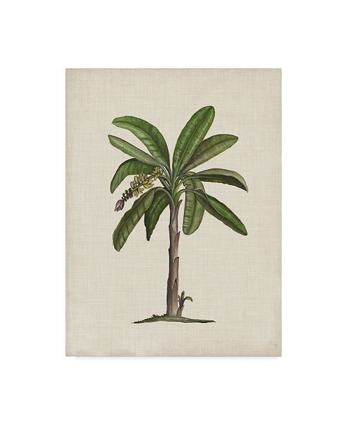 "Trademark Global Naomi Mccavitt British Palms II Canvas Art - 15"" x 20"""