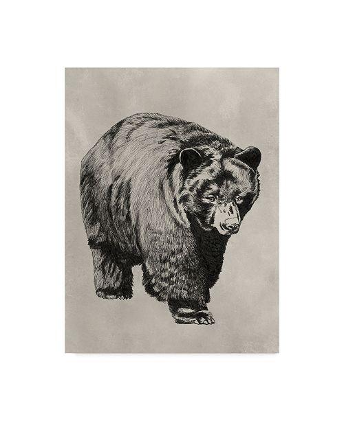 "Trademark Global Naomi Mccavitt Pen and Ink Bear I Canvas Art - 20"" x 25"""