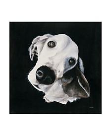 "Patsy Ducklow Max I Canvas Art - 27"" x 33"""