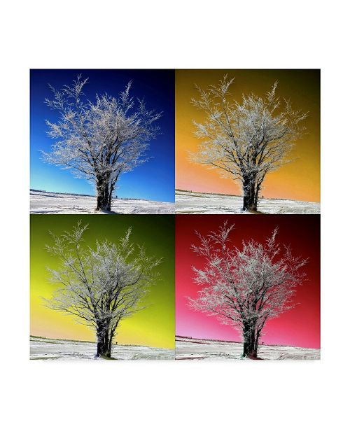 "Trademark Global Philippe Sainte-Laudy Tree Color Panels Canvas Art - 15"" x 20"""