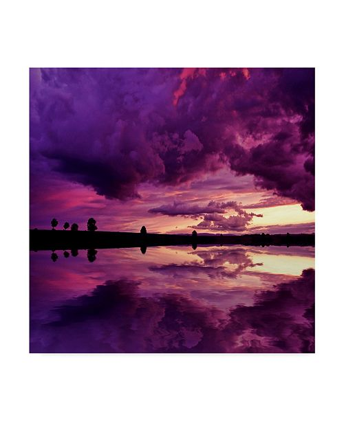 "Trademark Global Philippe Sainte-Laudy Secret World Canvas Art - 27"" x 33"""