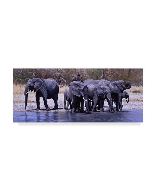 "Trademark Global Pip Mcgarry Elephants Drinking Canvas Art - 15"" x 20"""