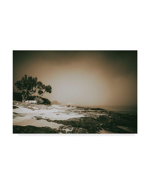 """Trademark Global Pixie Pics Coastal Fog Canvas Art - 37"""" x 49"""""""