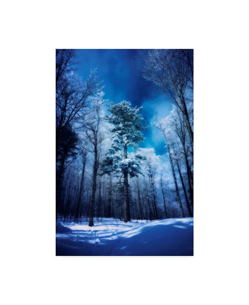 """Trademark Global Philippe Sainte-Laudy The Blue Hours Canvas Art - 20"""" x 25"""""""