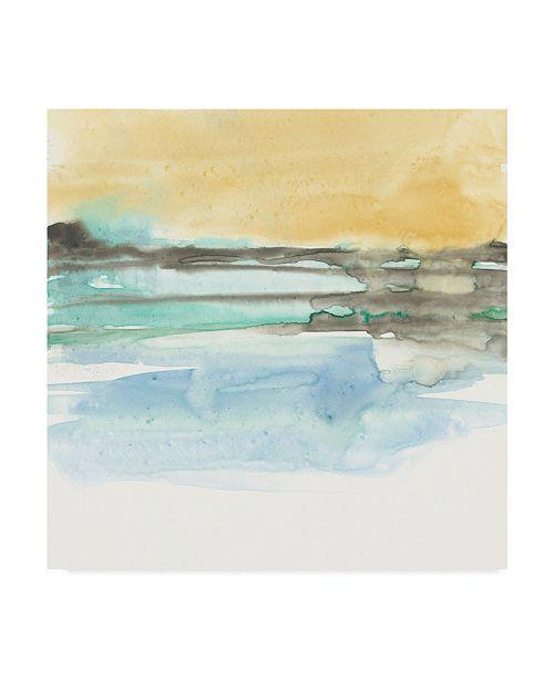 "Trademark Global Jennifer Goldberger Mountains to Sea IX Canvas Art - 20"" x 25"""