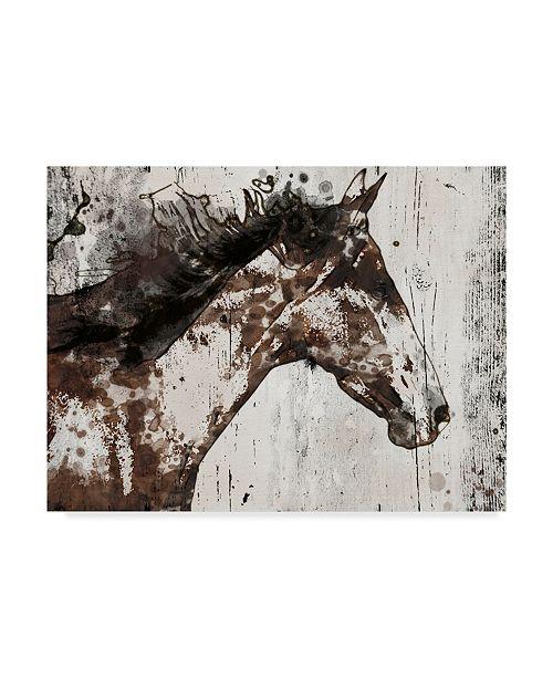 "Trademark Global Irena Orlov Galaxy Horse I Canvas Art - 20"" x 25"""