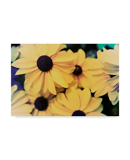 "Trademark Global Jason Johnson Susans I Canvas Art - 15"" x 20"""