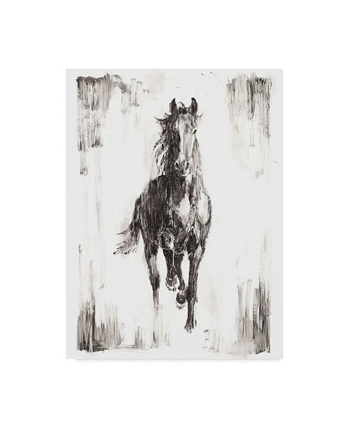 "Trademark Global Ethan Harper Rustic Black Stallion I Canvas Art - 37"" x 49"""