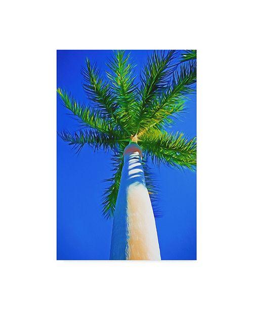 "Trademark Global Melinda Bradshaw Blue Sky Palm II Canvas Art - 20"" x 25"""