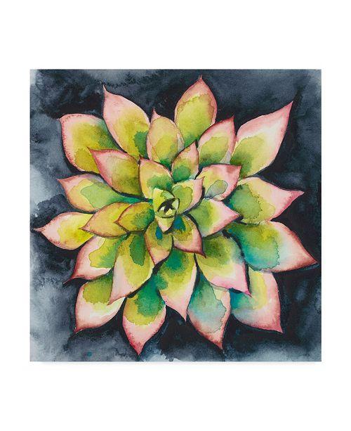 "Trademark Global Chariklia Zarris Succulent Rosette IV Canvas Art - 27"" x 33"""