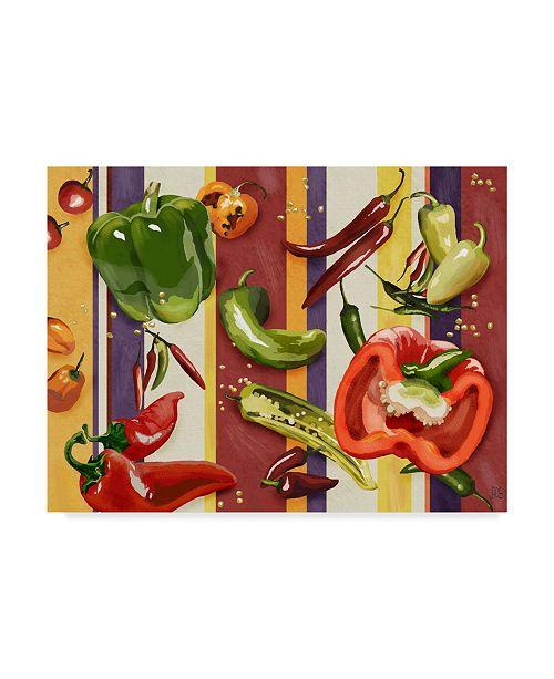 "Trademark Global Jade Reynolds Sarape Peppers II Canvas Art - 15"" x 20"""