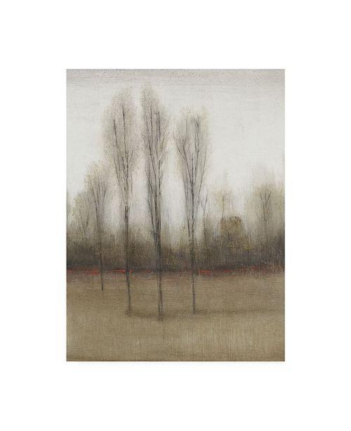 "Trademark Global Tim Otoole Last Day of Fall II Canvas Art - 37"" x 49"""