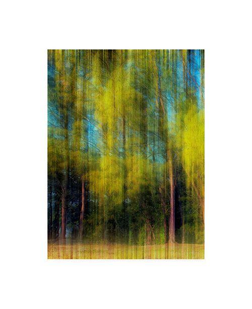 """Trademark Global Skip Nall Tree Blur I Canvas Art - 20"""" x 25"""""""