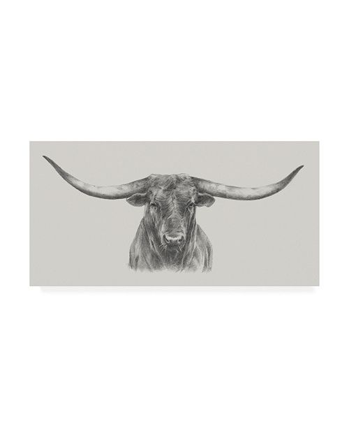 "Trademark Global Ethan Harper Longhorn Bull Canvas Art - 37"" x 49"""
