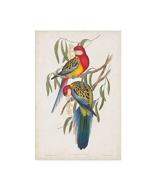 "Trademark Global John Gould Tropical Parrots IV Canvas Art - 37"" x 49"""
