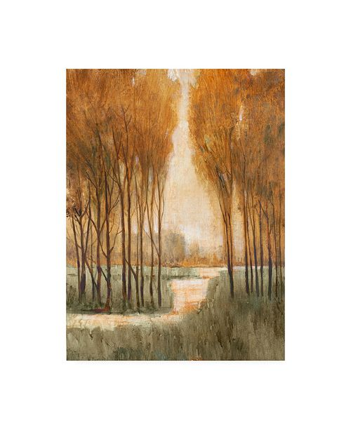 "Trademark Global Tim Otoole Golden Forest I Canvas Art - 37"" x 49"""