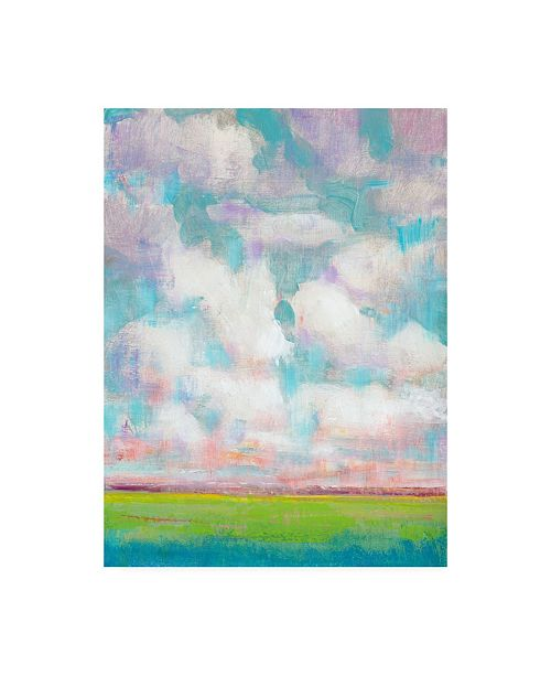 """Trademark Global Tim Otoole Clouds in Motion I Canvas Art - 20"""" x 25"""""""