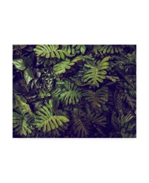 "PhotoINC Studio Tropical 4 Canvas Art - 27"" x 33.5"""