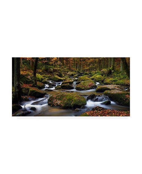 """Trademark Global Norbert Maier Autumn Waters Canvas Art - 15.5"""" x 21"""""""