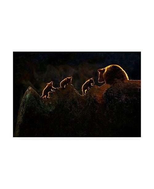 "Trademark Global Xavier Ortega Time to Play Canvas Art - 19.5"" x 26"""