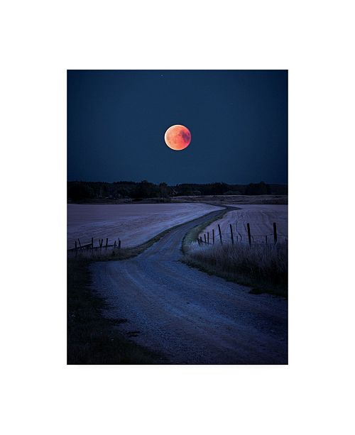 """Trademark Global Christian Lindsten Blood Moon 2018 Canvas Art - 36.5"""" x 48"""""""