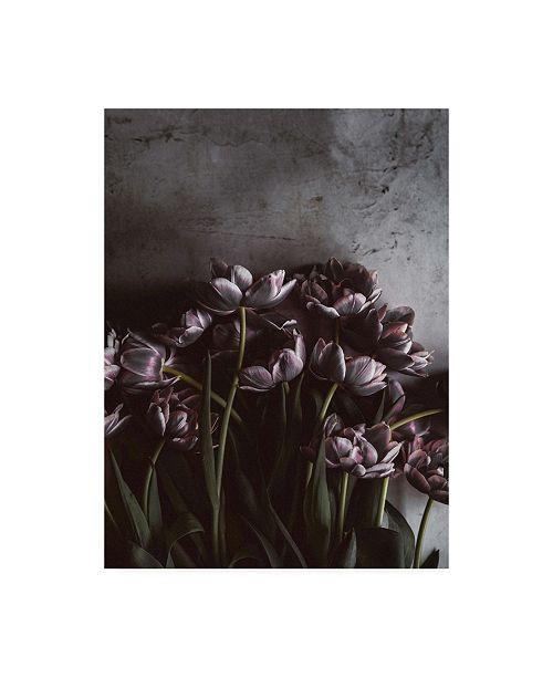 "Trademark Global Design Fabrikken Dark Tulips Fabrikken Canvas Art - 27"" x 33.5"""