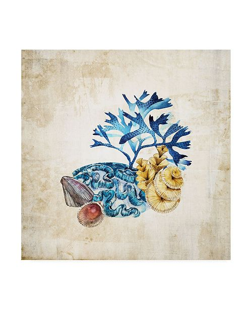 "Trademark Global Incado Sea life Corals II Canvas Art - 15.5"" x 21"""