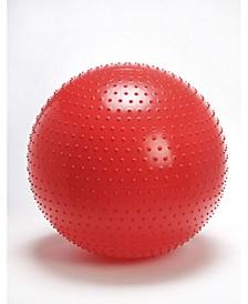 Therasensory Exercise Ball 60