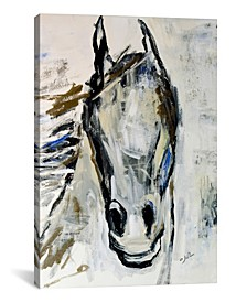 Picasso`S Horse I by Julian Spencer Wrapped Canvas Print Collection