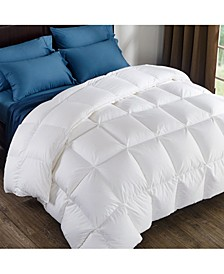 Comforter Twin