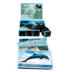 Stages Learning Materials Real Picture Sea Life Wooden Cube Puzzle 12 Piece