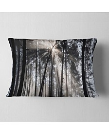 "Designart Sunbeams through Black White Forest Forest Throw Pillow - 12"" x 20"""